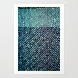 weaver Art Print
