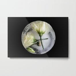 Frozen White Lisianthus Prairie Gentia on Black - Original Botanical Flora Digital Art Photography  Metal Print