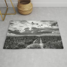 Road to Nowhere - Path in Cornfield Leads to Big Nebraska Sky in Black and White Rug