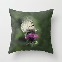 Butterfly on Thistle Flower Throw Pillow