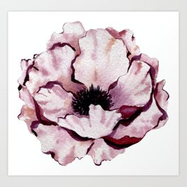 Pink Winter Peony Art Print