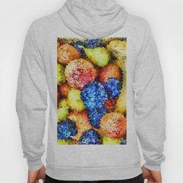 crystallized fruits Hoody