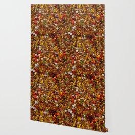 Multicolor beads assortment Wallpaper