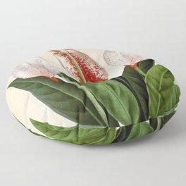 Anthurium scherzerianum old plate Floor Pillow