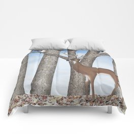 white-tailed deer & chickadees in the forest Comforters