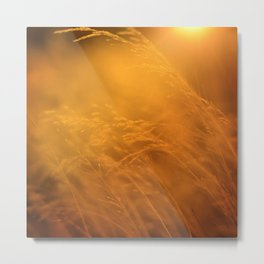 Living Out Of Touch Metal Print