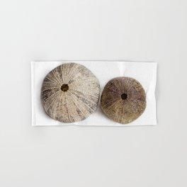 Sea Urchin Shells Hand & Bath Towel