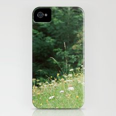 Wildflowers 2 iPhone (4, 4s) Slim Case