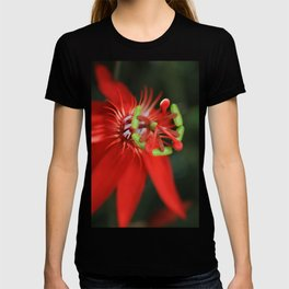 Passiflora vitifolia Scarlet Red Passion Flower T-shirt