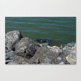 Salt Lake Scenery Canvas Print