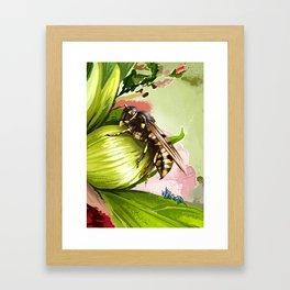 Wasp on flower 6 Framed Art Print