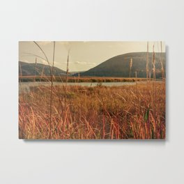Autumn in the Highlands Metal Print