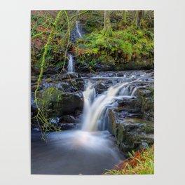 Woodland Falls Poster