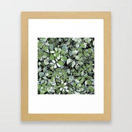 Summer. The leaves are green . Framed Art Print