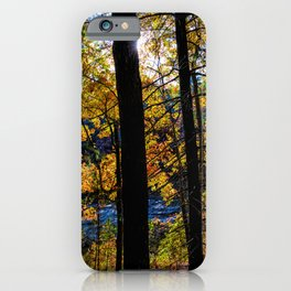 Walden Pond Autumn Forest  in Concord Massachusetts iPhone Case