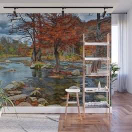 Guadalupe River Texas Wall Mural