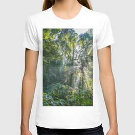 Sun Rays in a Forest T-shirt