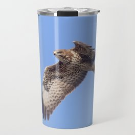 Common Buzzard (Buteo buteo) in flight Travel Mug