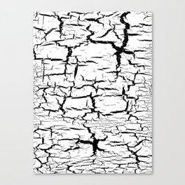 crackle Canvas Print