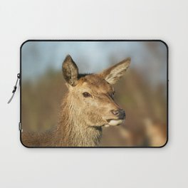 Wild Red Deer Laptop Sleeve