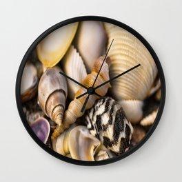 Sea Shell Vision Wall Clock