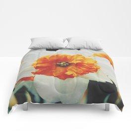 Closeup Narcissus 4 Comforters