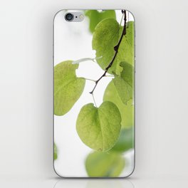Against the Dying of the Light iPhone Skin