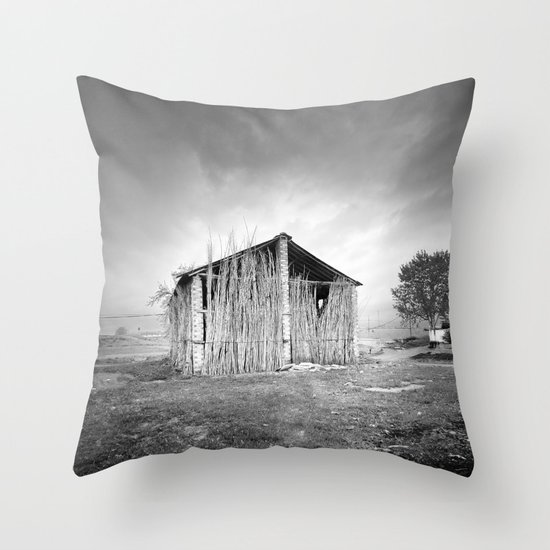 Old dryer tobacco Throw Pillow