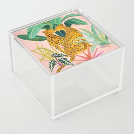 Cheetah Crush Acrylic Box