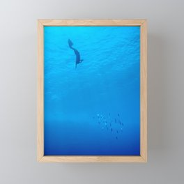 Dive through the rays of sunlight Framed Mini Art Print