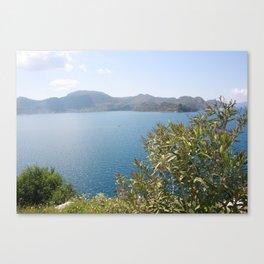Oleander Againt The Aegean near Selimiye Canvas Print