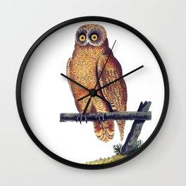 Cayenne Owl Wall Clock