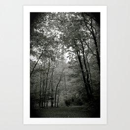 Trail Art Print