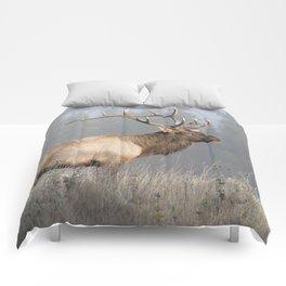 Bull Elk One Comforters