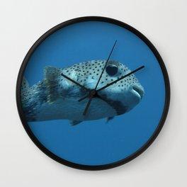Pufferfish Wall Clock