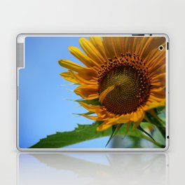 Sunfower Laptop & iPad Skin