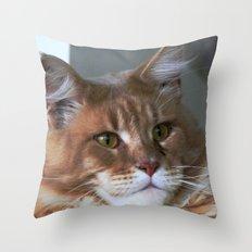 Orange cat with yellow eyes Throw Pillow