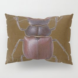 ANTIQUE STAG-HORNED BEETLE BROWN ART Pillow Sham