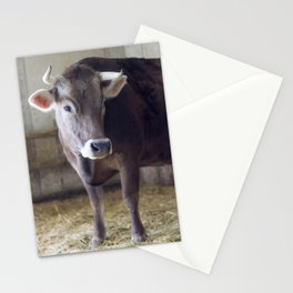For the love of cows Stationery Cards