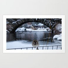 Snow in Central Park IX Art Print
