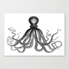 Octopus | Black and White Canvas Print
