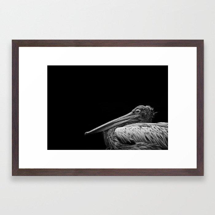 Captain Beaky Framed Art Print