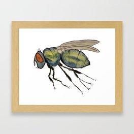 bummed out fly Framed Art Print
