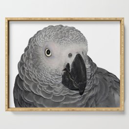 African Grey Parrot Serving Tray