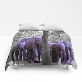 Purple guests Comforters