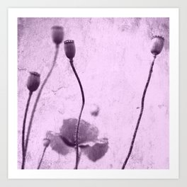 Poppy Art Image Art Print