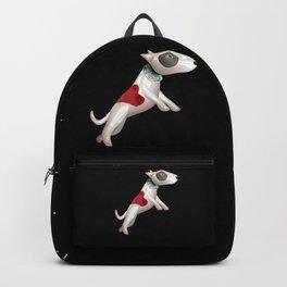 dog Backpack