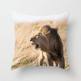 Lion Walk (Color) Throw Pillow