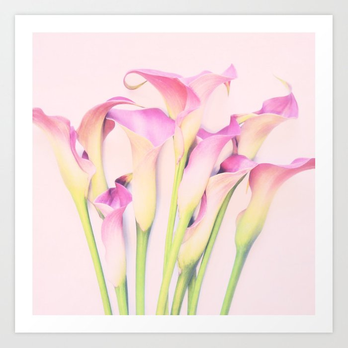 Callas Art Print