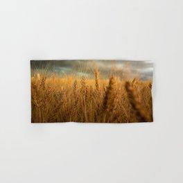 Harvest Time - Golden Wheat in Colorado Field Hand & Bath Towel